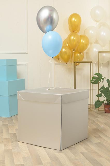 Box-Surprise-Silver-Grande